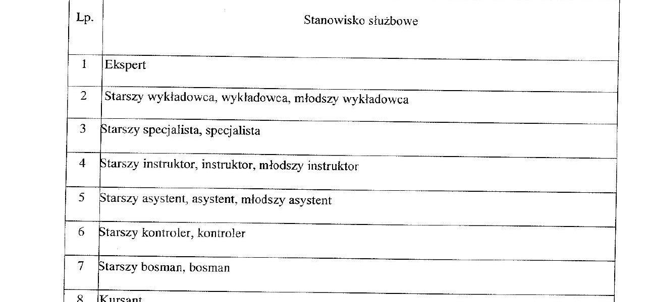 tabele_dodatke_sluzbowy